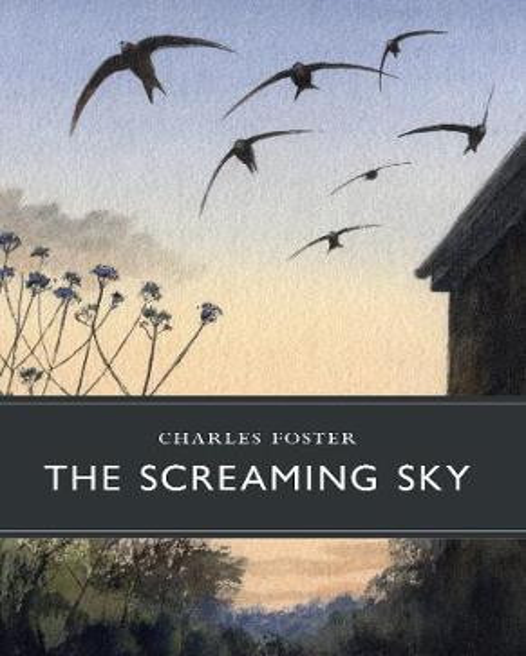 The Screaming Sky