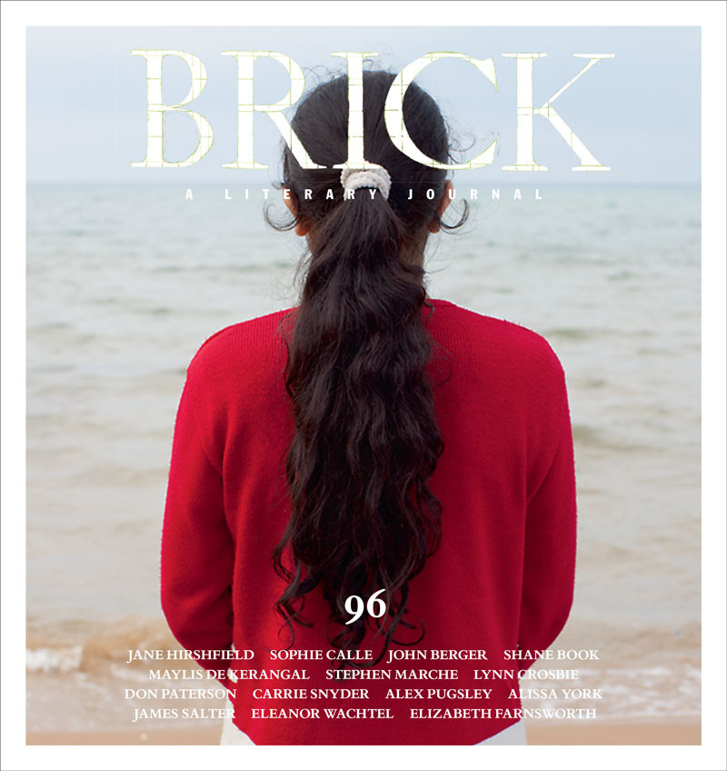 Brick 096 Winter 2015 2016