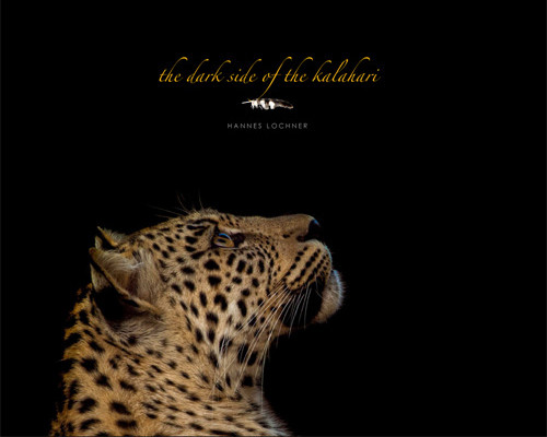 Dark Side of Kalahari, The