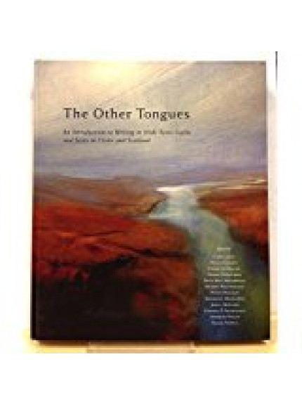 Other Tongues, The: An Introduction to Writing in Irish,