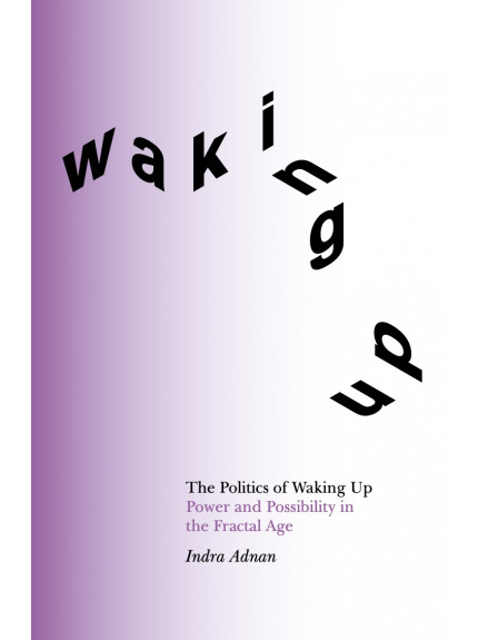 Politics of Waking Up, The: Power and possibility in the