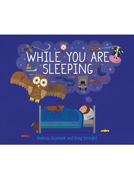 While You Are Sleeping 9781760360108 cover
